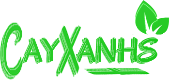 cayxanh